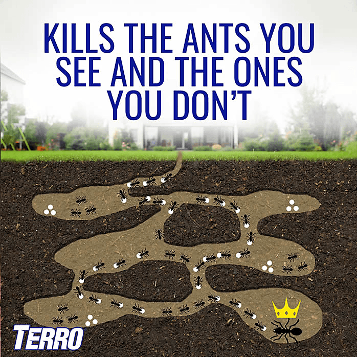 Terro Ant Baits Kill the Ants you see and the ones you don't!